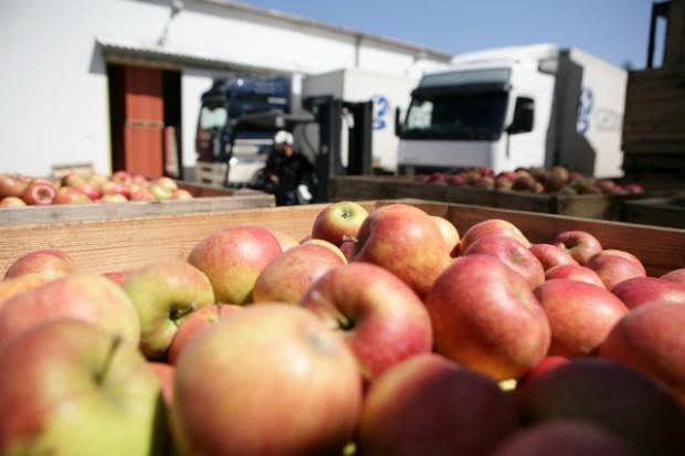 Rosjanie chcą jeść polskie jabłka