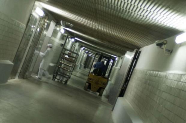 ARR wycofa z rynku blisko 6 tys. ton wieprzowiny