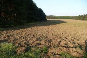 Ceny gruntów rolnych przestały rosnąć