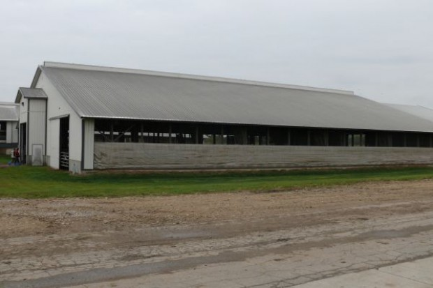 Spółki rolne ANR na sprzedaż