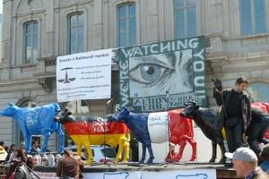 Bruksela: protest producentów mleka