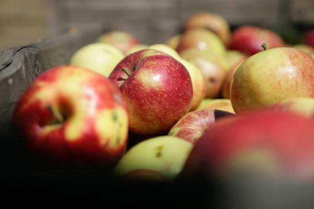 Jabłko wysokiej jakości