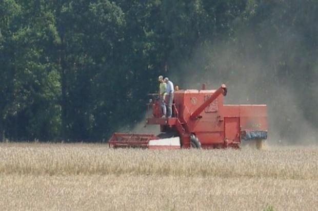 Wysoki eksport zbóż z UE