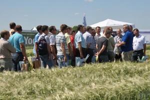 Farmer nagradza - innowacje