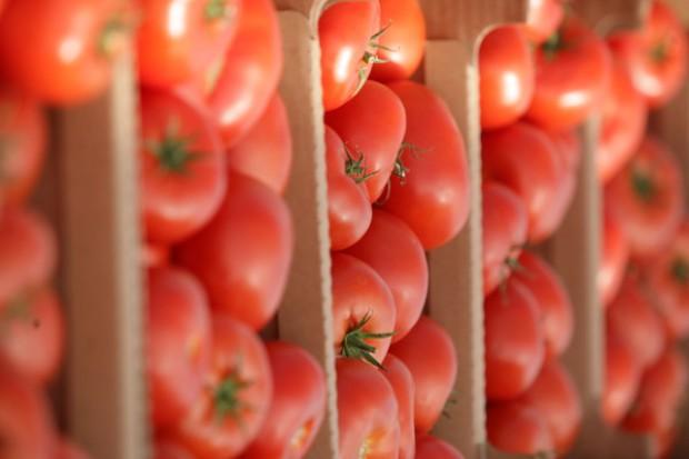 Gwarancja bezpieczeństwa w sprawie eksportu warzyw do Rosji