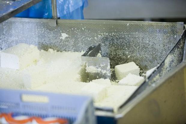 Superbakteria w brytyjskim mleku
