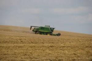 Rolnicy znowu koszą jęczmień