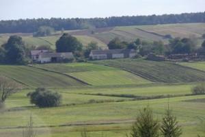 GUS: od 2002 r. o 1/4 zmalała liczba gospodarstw rolnych