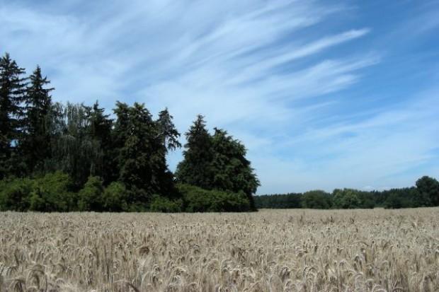 Protest dzierżawców gruntów rolnych