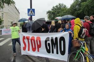 Rolnicy ekologiczni przeciw GMO