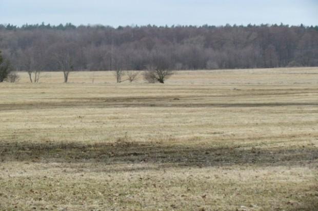 Komisja rolnictwa pracowała nad nowelą ustawy o nieruchomościach rolnych