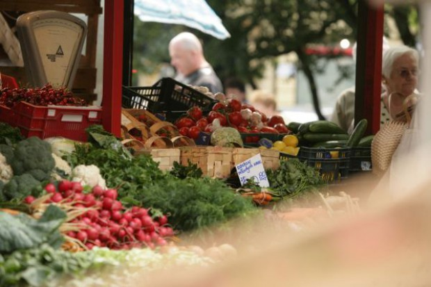Jakie będą tegoroczne zbiory warzyw gruntowych?