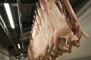 Cenowe skoki w skupach wieprzowiny