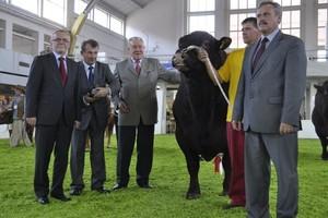 Agrofirma Witkowo zdominowała ring w Poznaniu