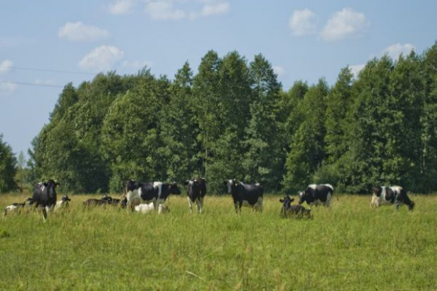 Dyskryminowani właściciele działek Natura 2000