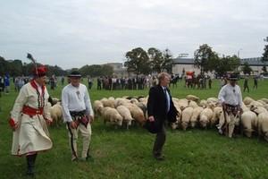 GPC: Cwane sztuczki byłego wiceministra rolnictwa
