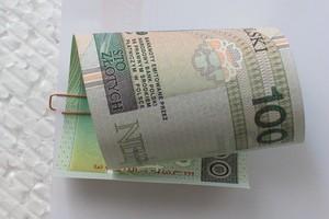 ARiMR: Wypłata dopłat ONW za 2011 r. rusza od poniedziałku 17 października