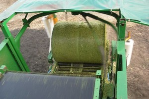 Nowa technologia kiszenia kukurydzy  a wydajność mleczna