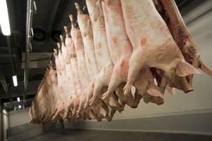 Zakłady mięsne szykują magazyny