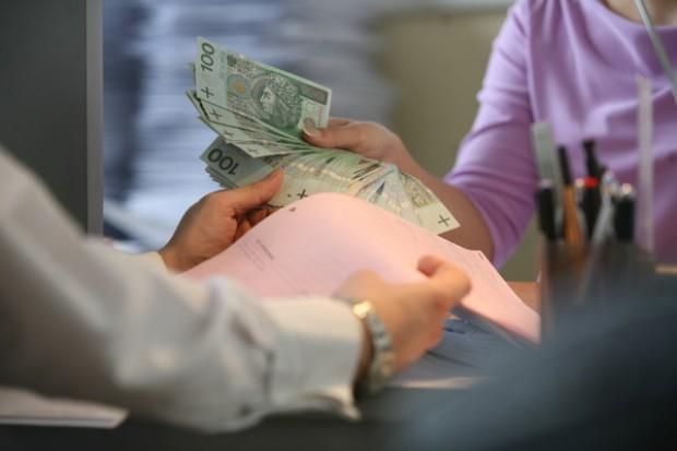 Dopłaty bezpośrednie kosztują