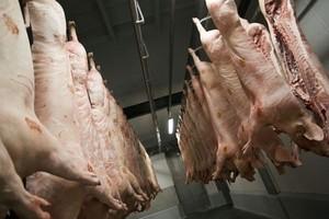 Drastyczny wzrost cen mięsa