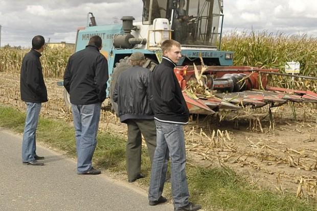Młodzi rolnicy otrzymają pomoc