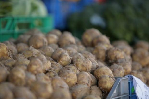 Ceny ziemniaków są bardzo niskie