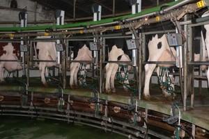 Projekt nowelizacji ustawy o organizacji rynku mleka