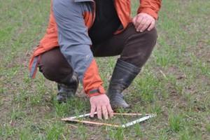 Obsada zbóż – miernik stanu plantacji
