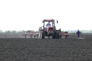 Termin siewu kukurydzy coraz wcześniejszy