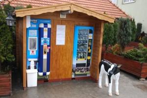 Mlekomatowy biznes