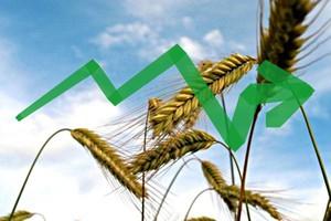 Selektywny wzrost towarów rolnych