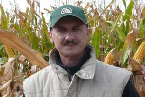 Kukurydza zróżnicowana, ploniarki więcej niż zwykle