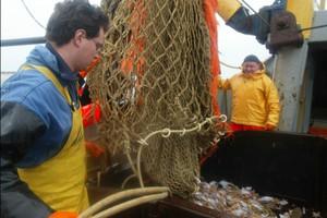 Nowa polityka rybołówstwa