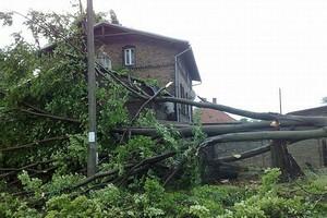 Powalone drzewa, uszkodzone dachy