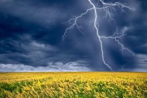 """El Nino może znowu """"namieszać"""" w globalnym rolnictwie"""