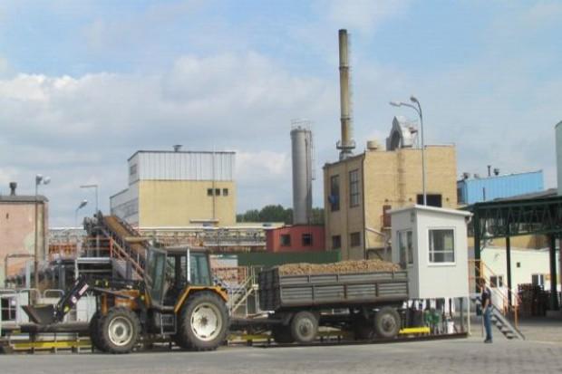 PEPEES zamierza pozyskać ok. 160 tys. t ziemniaków