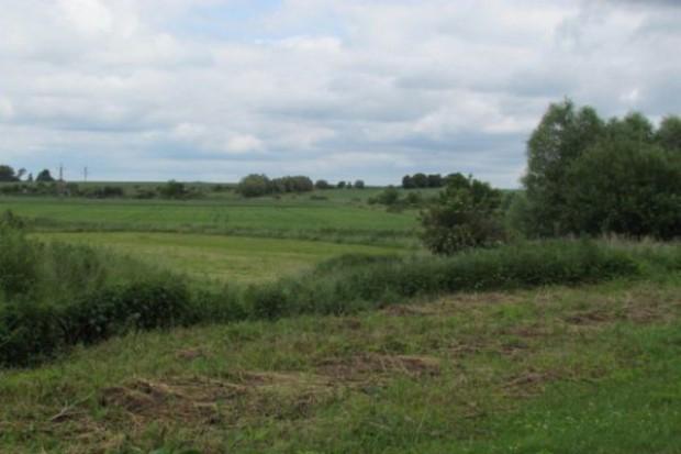 Dzierżawcy chcą oddać ok. 79 tys. ha