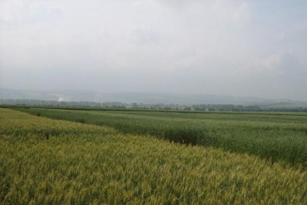 Rolnicy sami sprawdzą skuteczność preparatów tzw. ProBio