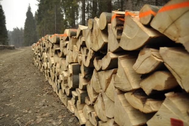 Sprzedaż drewna - nowe zasady
