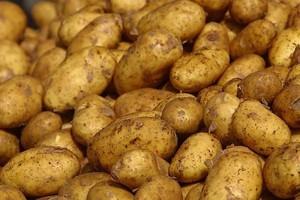 Ziemniaki się trochę odbiły
