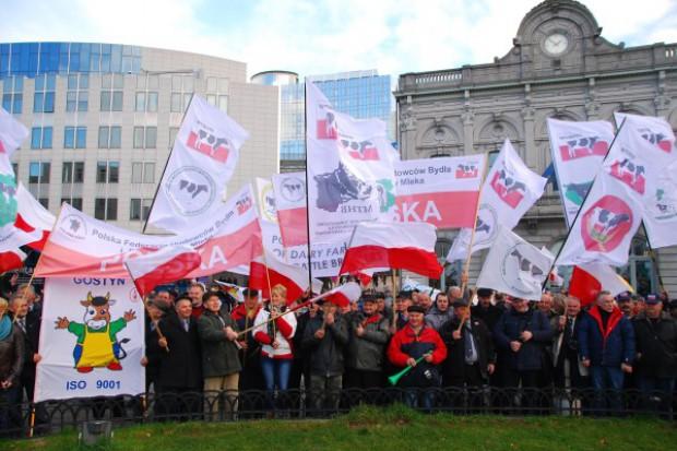 Polscy hodowcy w Brukseli