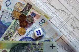 Minister rolnictwa: W styczniu będzie więcej dopłat bezpośrednich
