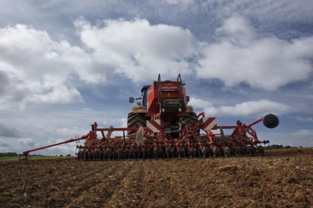 Efekty uproszczeń agrotechnicznych