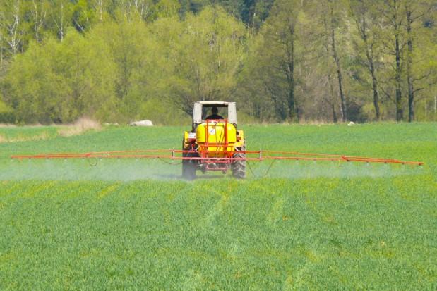 Temperatura a działanie fungicydów