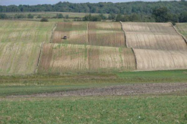 Ziemia rolnicza drożeje systematycznie