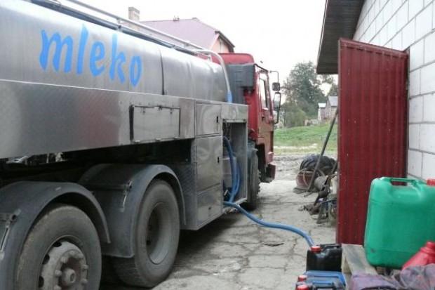 Pogłowie spada, wydajność rośnie, a co z ceną mleka?