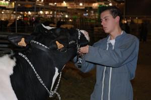 SIMAGENA – salon innowacji w hodowli bydła