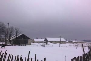Zamiast owiec bieleje śnieg - kolejna interwencja ziemska