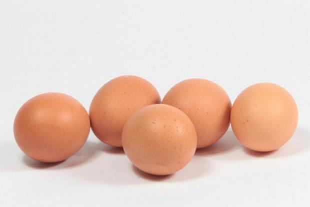 Umorzone śledztwo ws. suszu jajecznego